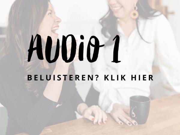 Audio 2 (3)