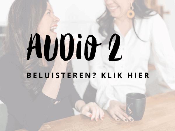 Audio 2 (4)